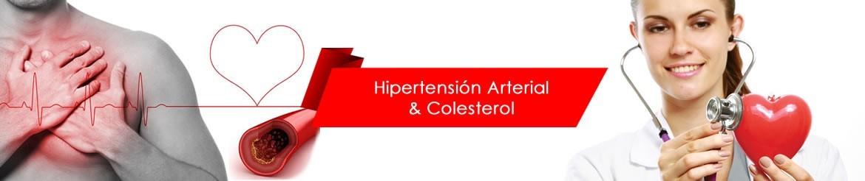 Colesterol | Hipertensión