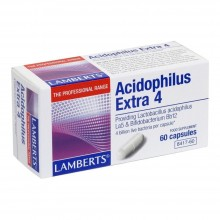 Acidophilus Extra 4   Lamberts   60 Comp 4 mil millones de bacterias vivas   Sistema digestivo