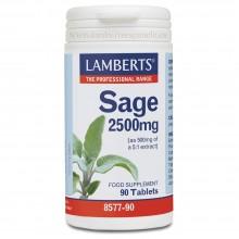 Salvia | Lamberts | 90 cáps. 2500 mg | Circulación - Piel