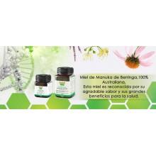 Berringa Manuka Miel|Berringa | 250 gr MGO220+ | Antibacteriana y Antioxidante