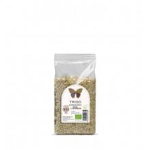Trigo Sarraceno Grano ECO 500 gr - Naturcid | Vegan