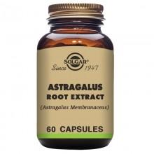 Astrágalo | Solgar | 60 Cáps de 475 mgr | Inmunidad - Longevidad