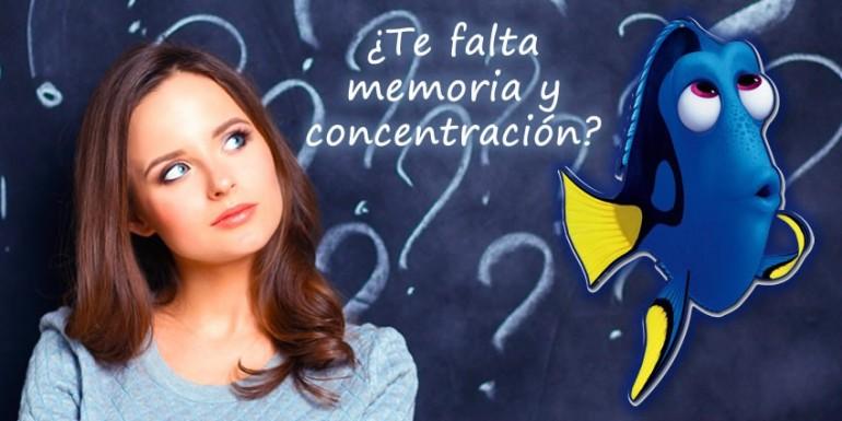 ¿QUÉ PODEMOS HACER SI TENEMOS MEMORIA DE PEZ? ¿Que productos nos pueden ayudar a mejorar la memoria y la concentración?